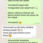 Tempat Jual Kambing Aqiqah Jakarta Murah